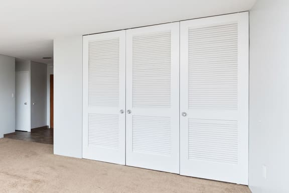 The KC MOdern spacious closets